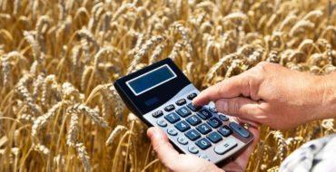 Меры государственной поддержки сельскохозяйственных товаропроизводителях – субъектах МСП